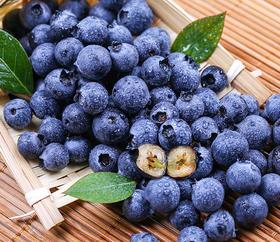 农谷生态蓝莓新摘现发500g 顺丰速运