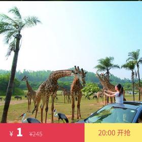 广州长隆野生动物世界平日成人票