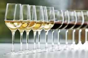 【上海】6月24日知味盲品入门系列第3讲:各国经典白葡萄品种对比