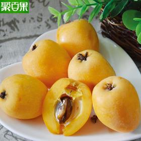 四川大五星枇杷把琵琶应季农家新鲜水果5斤