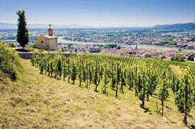 【北京】6月27日罗纳河谷葡萄酒产区探索课程:纵横五百里,上下两千年