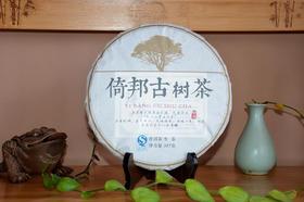 2016年倚邦纯料古树普洱生茶