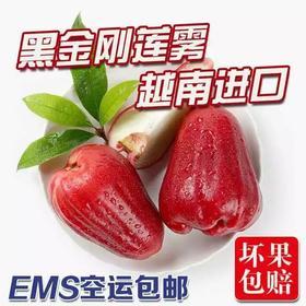【EMS空运】3斤送1斤!越南进口黑金刚莲雾越南特产新鲜水果热带水果4斤一级果包邮