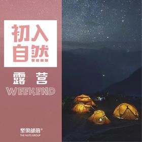 【 森林奇妙夜| 露营】宁波ts