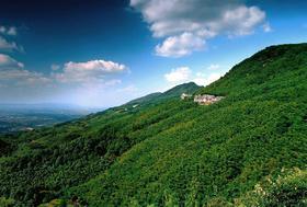3.3静心之旅:走竹海古道,登苏南第一峰,漫步宜兴竹海(1天)