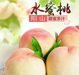 A+【桃大大 】【央视直播推荐】可以吸的正宗阳山水蜜桃,皮薄肉厚,果园现摘,顺丰发货