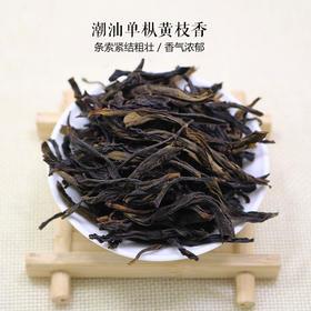 潮汕单枞 黄枝香 48小时内发货