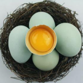 【南海网微商城】海南散养新鲜绿壳鸡蛋 20枚包邮