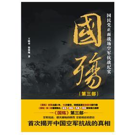 《国殇:国民党正面战场空军抗战纪实(第三部)》