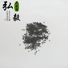 【弘毅六不用生态农场】六不用 大葱籽  自留种 25g/份 山东包邮
