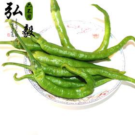 【弘毅六不用生态农场】六不用辣椒 新鲜上市 15元/斤