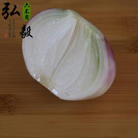 【弘毅六不用生态农场】六不用洋葱 圆葱 3斤/份,3份以上包邮