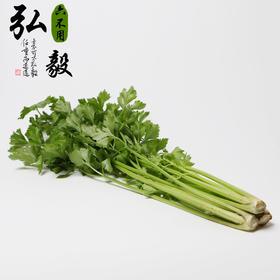 【弘毅六不用生态农场】六不用 芹菜 2斤/份