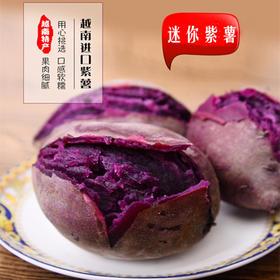 【尝鲜秒杀】越南迷你小紫薯 香 甜 糯 含大量花青素  5斤装包邮 中越边境发货