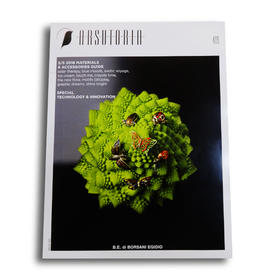 ARS意大利专业鞋子杂志单期(1本)/快递直送