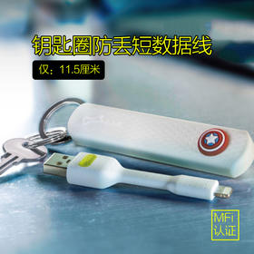 台湾Bone LinKey Lightning苹果数据线防丢钥匙圈苹果MFi认证短线