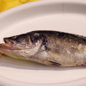 清蒸开口桂鱼