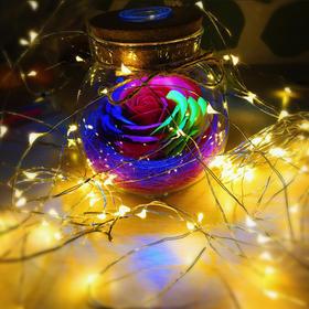 【蛋糕装饰彩灯】防水LED铜线灯串低压纽扣电池盒灯节日装饰灯