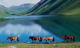 【天天发团】7月,带您走进人间仙境——新疆喀纳斯!