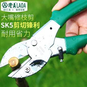 老A园艺剪刀8寸树枝剪刀果枝剪园林剪刀修花剪刀修枝摘果剪刀