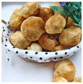 【乡味贵州站】猴头菇 猴头王 猴头蘑菇 猴头菌  125克