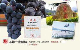 福安象环巨峰葡萄5斤装68元超值特卖!