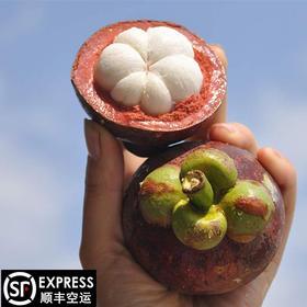 【水果皇后】正宗泰国进口新鲜山竹特级大果(沙竹)5斤装顺丰空运包邮