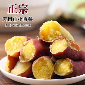 临安小香薯天目山小红薯5斤新鲜紫薯地瓜板栗薯农家番薯包邮