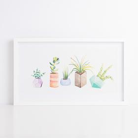 Hint系列组合小盆栽装饰画