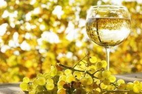 【上海】7月27日 Best Chardonnay 顶级霞多丽品鉴会: 从你的全世界路过系列
