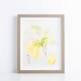 Hint系列柠檬树厨房装饰画
