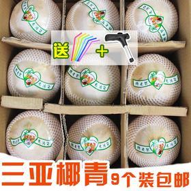 【秒杀】海南新鲜椰青椰子9个装现摘削皮椰子送吸管开椰器包新鲜夏日天然饮品包邮