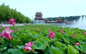 7.29 暑假一起去湘潭庞龙大观园采摘葡萄吧!
