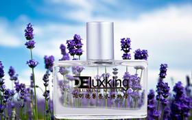 薰衣草 Lavender