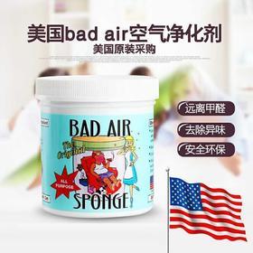 美国进口 白宫专用Bad Air Sponge空气净化剂进口除甲醛清除剂异味新车新房
