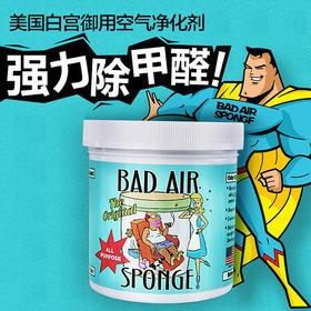 「甲醛终结者」美国Bad Air Sponge空气净化剂室内汽车除甲醛装修污染孕婴适用 400g/盒