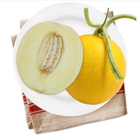 缅甸黄河蜜瓜 1个装 单果1.5-2kg 新鲜水果
