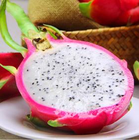 越南进口白心火龙果 3个装大果 单果约450~500g 新鲜水果