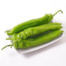 鲜菜随心选——青椒(约重0.8市斤)