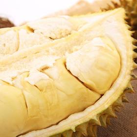 【预售24-25号配送】泰国进口金枕头榴莲 新鲜带壳(带壳4.1-4.5kg左右,1-2个装)