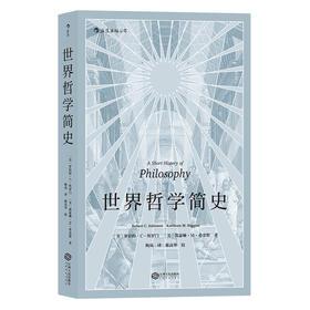 世界哲学简史(生动风趣的哲学入门读物)
