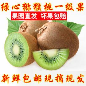 【美货】陕西绿心猕猴桃现货新鲜水果共发5斤