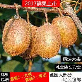 正宗江山徐香弥猕猴桃 绿心新鲜水果非红黄心新西兰奇异果5斤