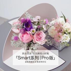 Smart系列 | Pro版 一周2款,共8束,新用户送花瓶