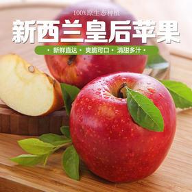 【进口苹果】新西兰皇后红玫瑰苹果 新西兰苹果 新鲜进口苹果12个装包邮