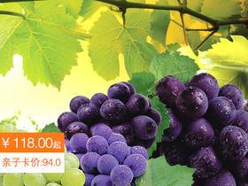 【买一送一】闽清龙晶葡萄5斤装118元顺丰包邮,买1箱送1斤!