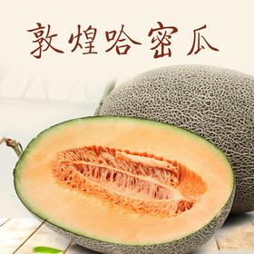 【产地直供】敦煌新鲜哈密瓜4-5个一箱