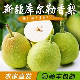 【普通快递包邮】正宗新疆库尔勒香梨 新鲜水果8斤一级特级香梨特惠