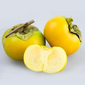 【拼团包邮】广西恭城脆甜柿子 清脆爽口(5斤/8斤任选,含15-24个左右,限乌市地址!)