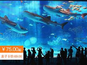 75元起玩转罗源海洋世界